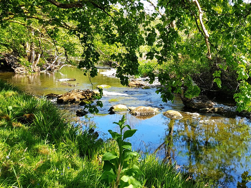 Summer by the river at Benar