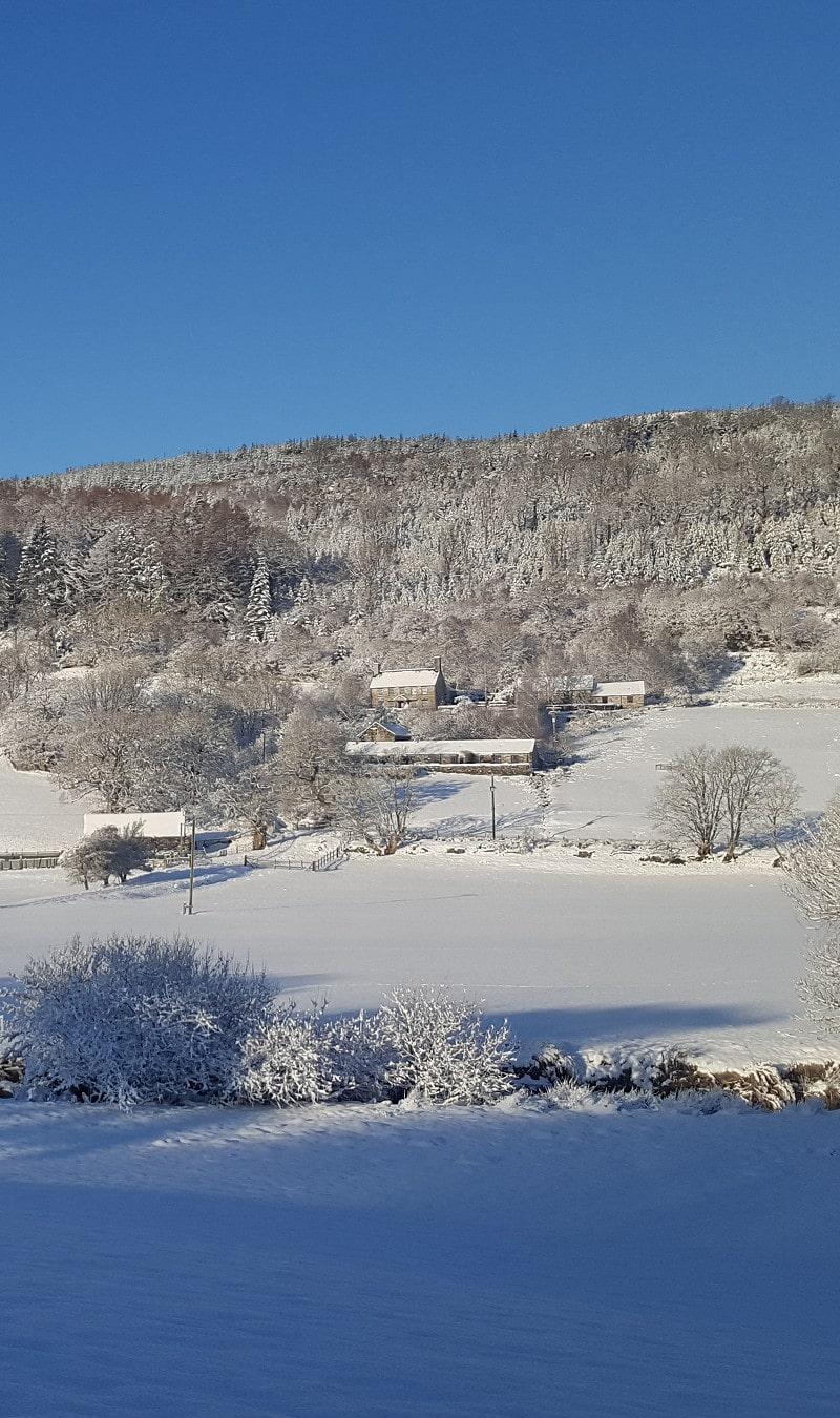 Winter at Benar Cottages